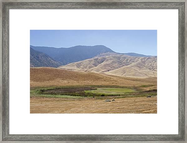 Elk Release Site Of Sag Pond Framed Print