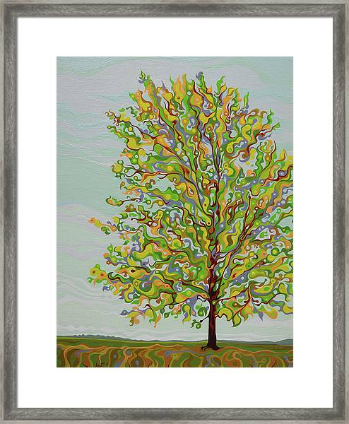Ellie's Tree Framed Print