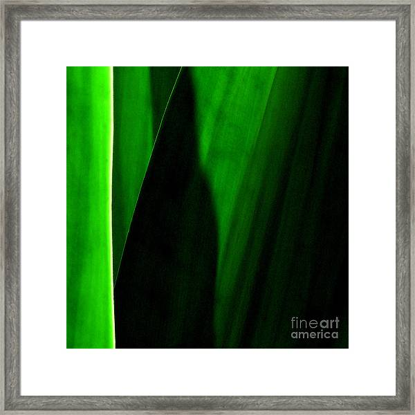 Emerald Framed Print by James Temple