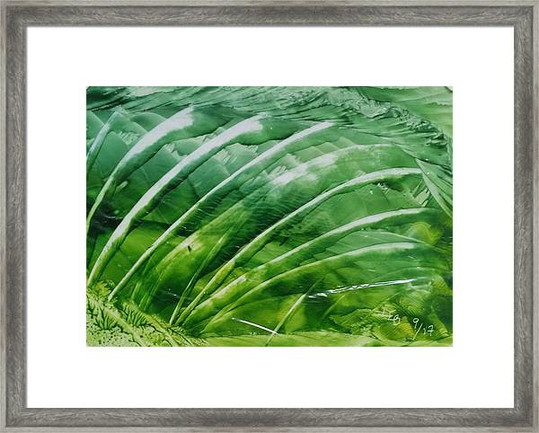 Encaustic Abstract Green Fan Foliage Framed Print