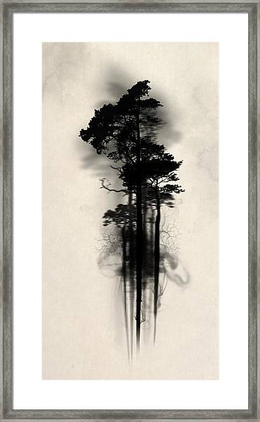 Enchanted Forest Framed Print