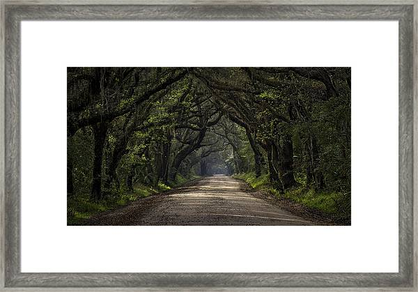 Enchanted Framed Print by Michael Donahue