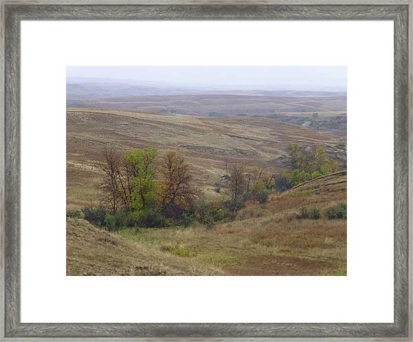 Enchantment Of The September Grasslands Framed Print