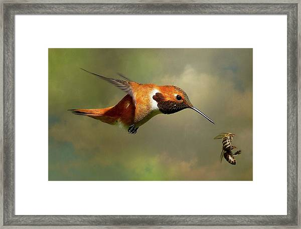 Encounter 3 Framed Print