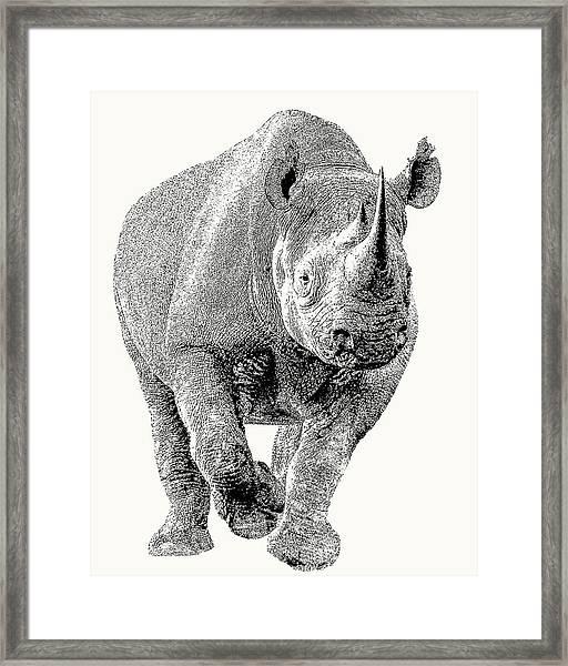Endangered Black Rhino, Full Figure Framed Print