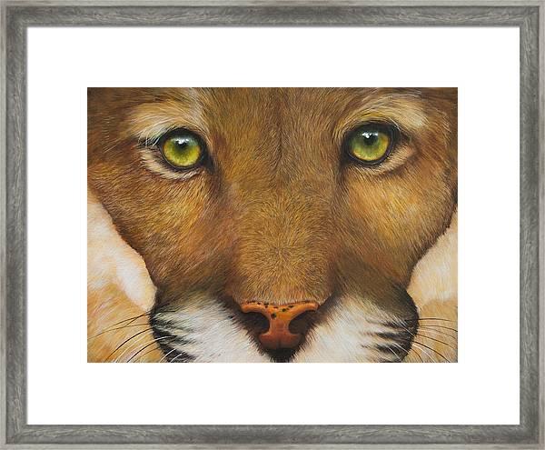 Endangered Eyes Framed Print