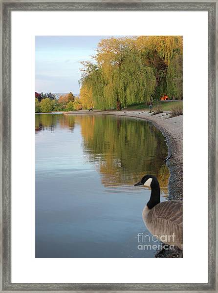 Enjoying The View Framed Print
