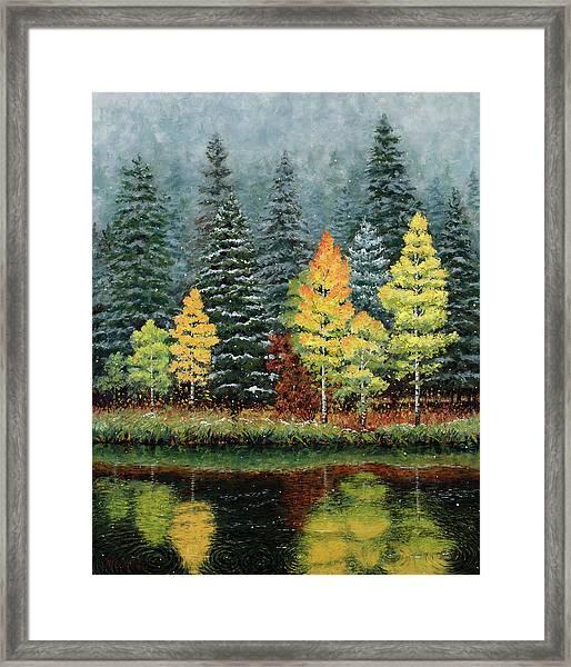 Equinox Framed Print