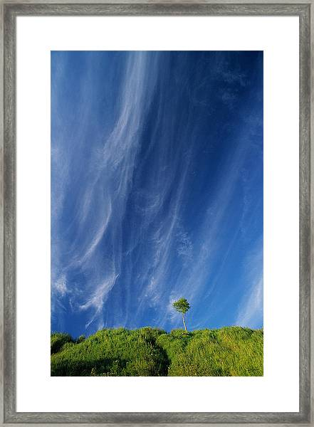 Essence Of One      Framed Print