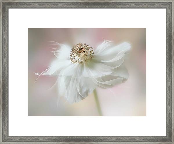 Ethereal Beauty Framed Print