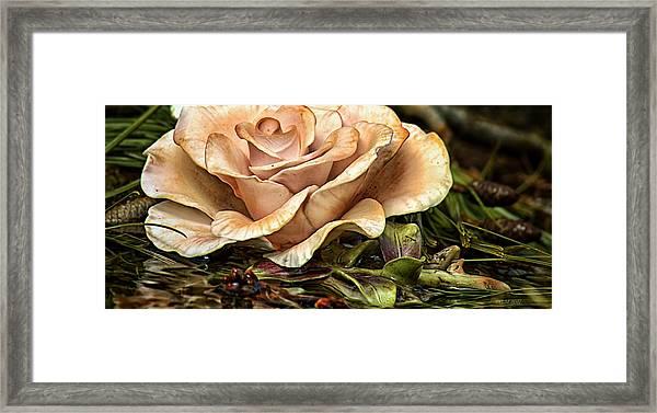Ethereal Effloresce Framed Print