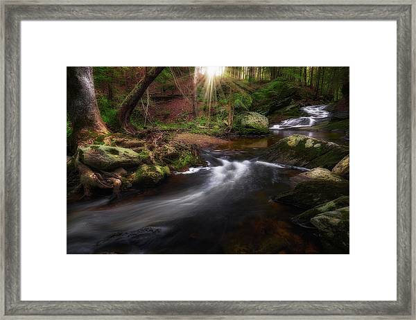 Ethereal Morning 2017 Framed Print