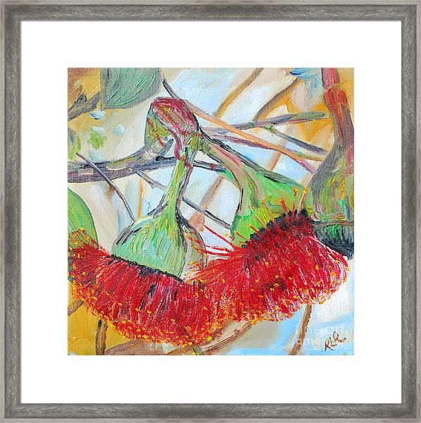 Eucalyptus Flowers Framed Print