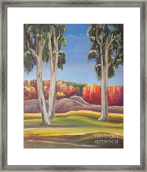 Eucalyptus Framed Print by Ushangi Kumelashvili