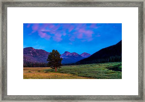 Evening At Christmas Meadows Framed Print
