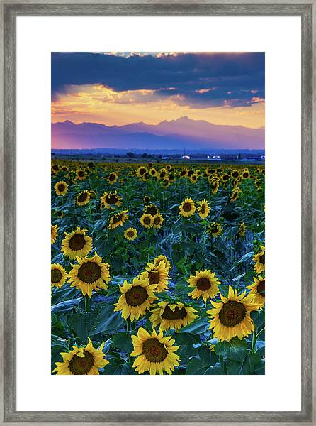 Framed Print featuring the photograph Evening Colors Of Summer by John De Bord