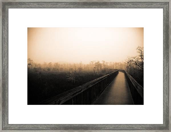 Everglades Boardwalk Framed Print