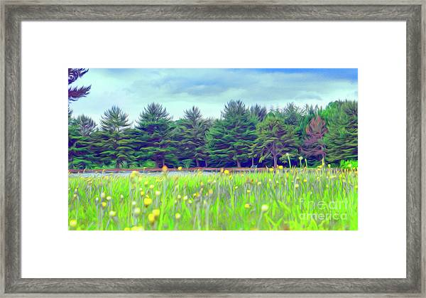Evergreen Lake - Impressionism Framed Print