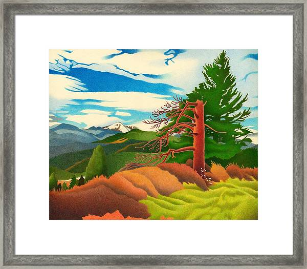 Evergreen Overlook Framed Print