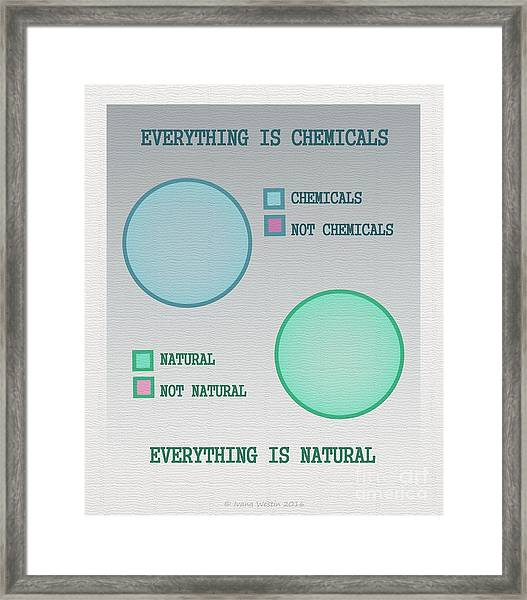 Everything Is Framed Print