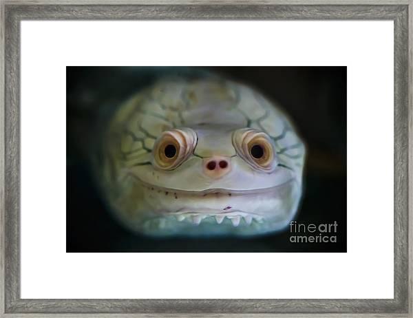 Existence Framed Print
