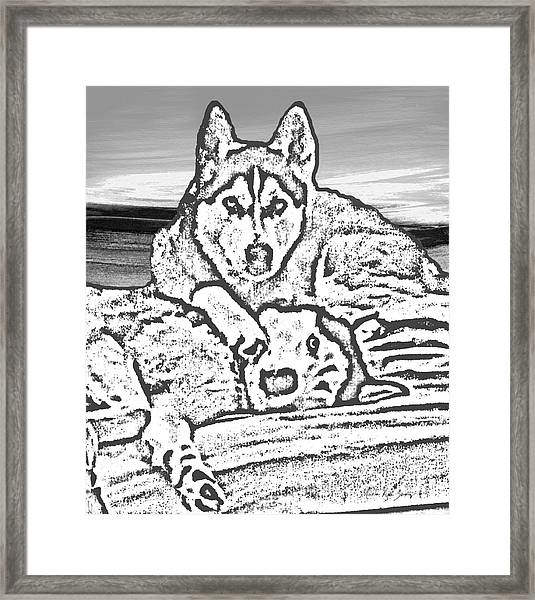 Framed Print featuring the photograph Expressive Huskies Mixed Media G51816_e by Mas Art Studio