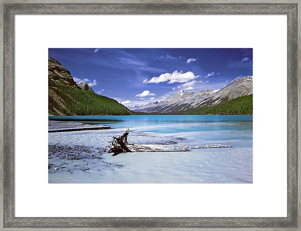 Exterior Decorations Framed Print