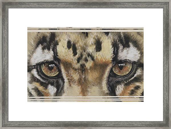 Clouded Leopard Gaze Framed Print