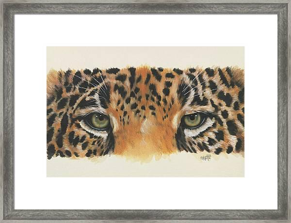 Jaguar Gaze Framed Print