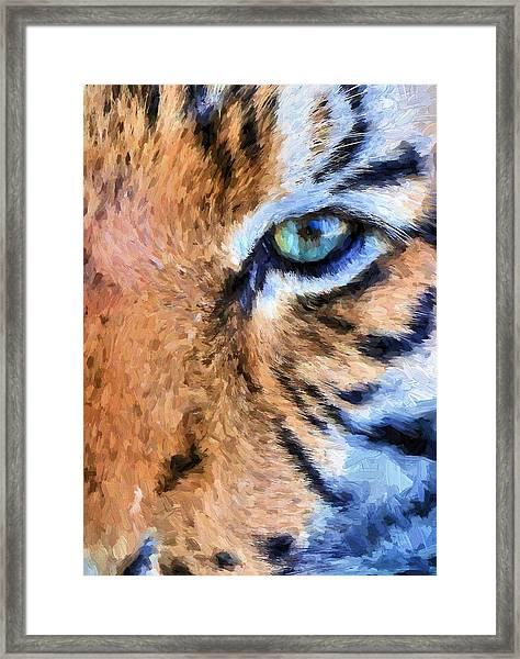 Eye Of The Tiger Framed Print