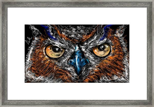 Eyes In The Night... Framed Print