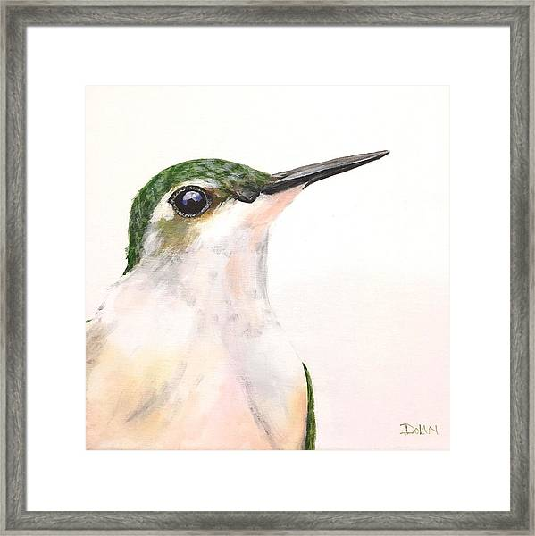 F. Ruby Throated Hummingbird Framed Print