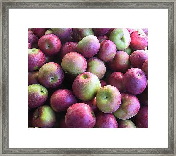 Fabulous Fall Fruits Framed Print