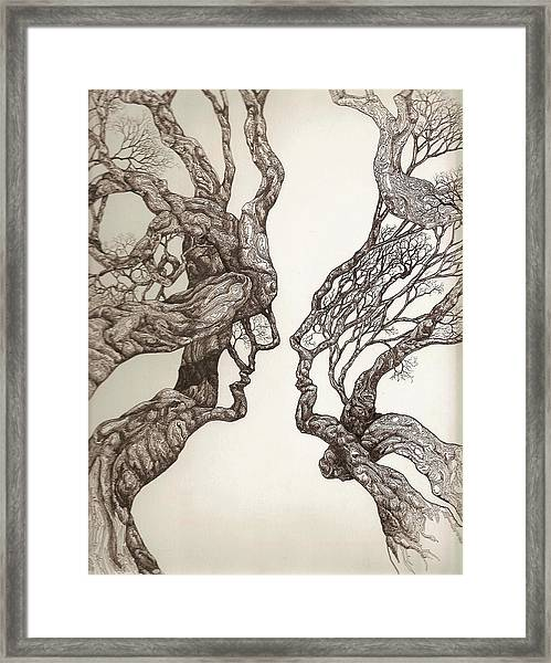 Face Tree 11 Framed Print