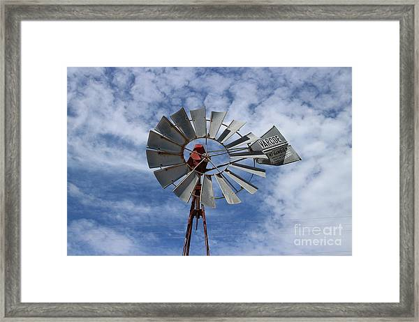 Facing Into The Breeze Framed Print