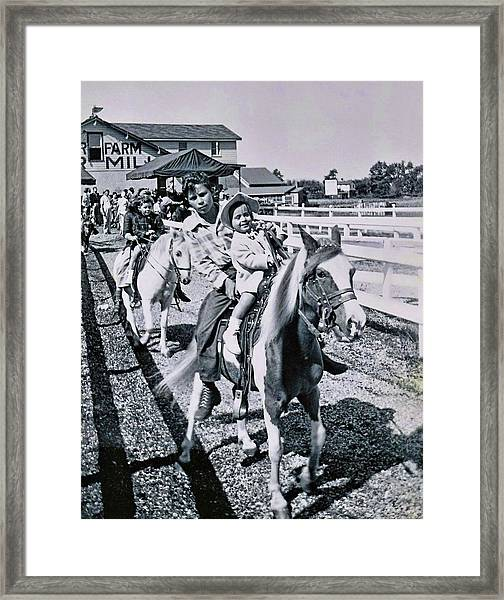 Fair Pony Framed Print