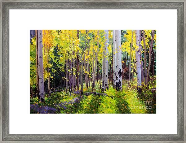 Fall Aspen Forest Framed Print