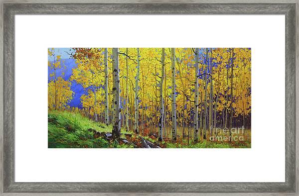 Fall Aspen Hill  Framed Print