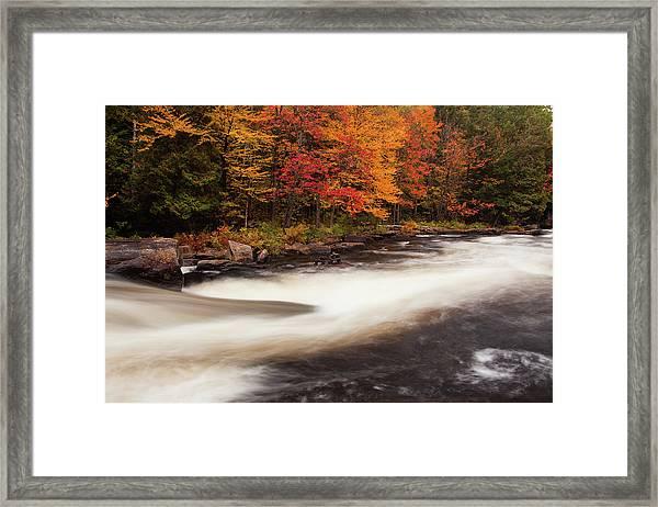 Fall At Oxtongue Rapids Framed Print