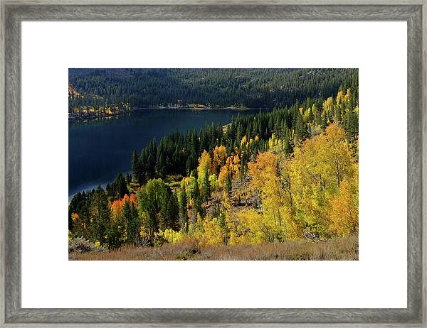 Fall At Rock Creek Lake Eastern Sierra Framed Print