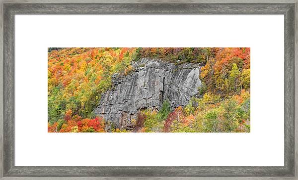 Fall Climbing Framed Print