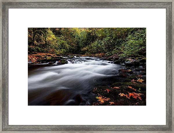 Fall Color At Cedar Creek Framed Print