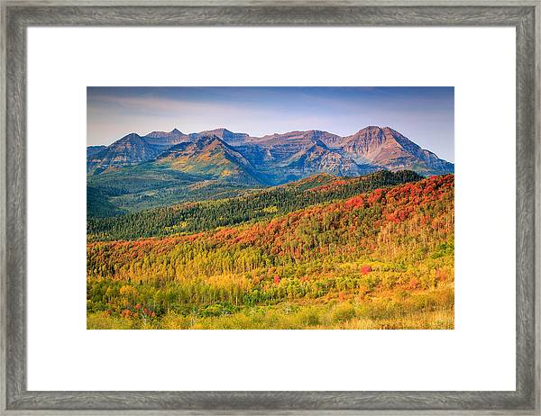 Fall Color On The East Slope Of Timpanogos. Framed Print by Johnny Adolphson