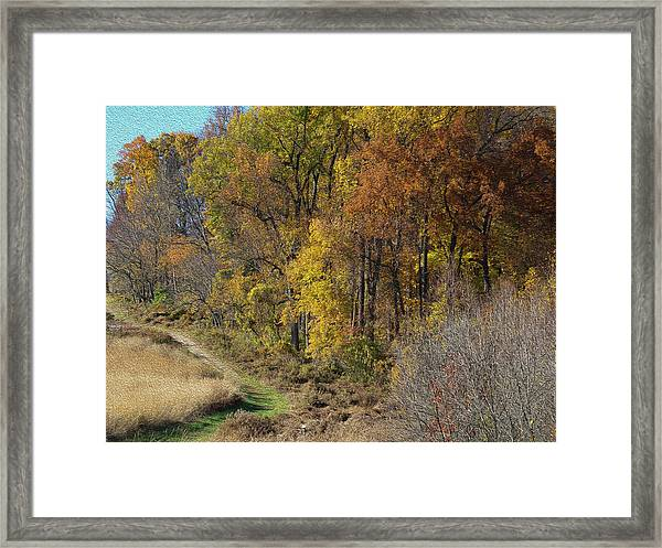 Fall Colors As Oil Framed Print