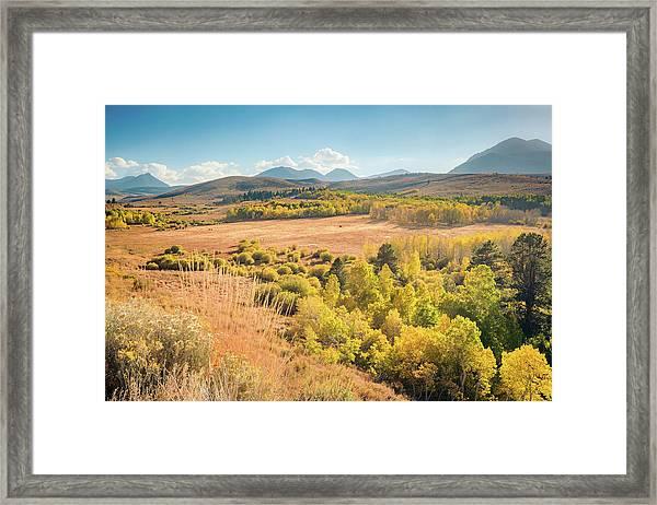 Fall Colors At Dunderberg Meadows Framed Print