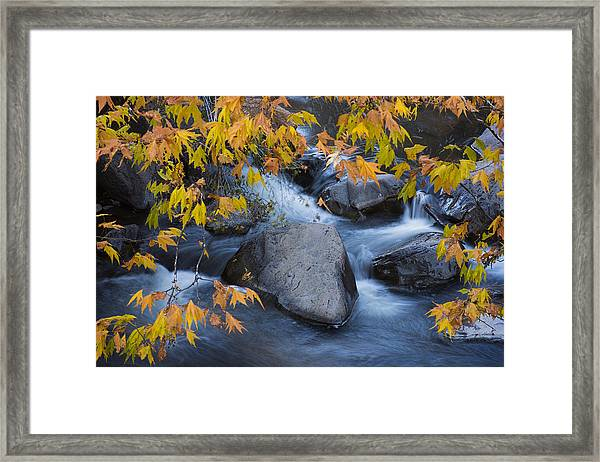 Fall Colors At Slide Rock Arizona Framed Print