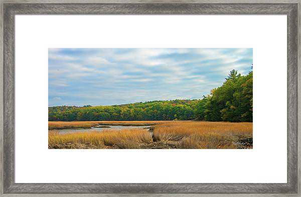 Fall Colors In Edgecomb Framed Print