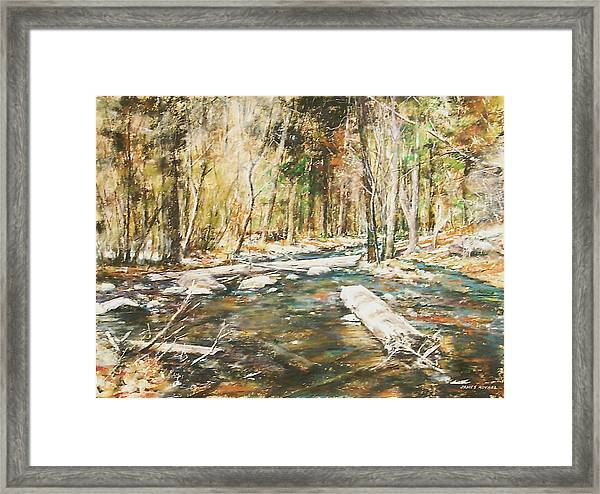 Fall Colors Framed Print by James Roybal