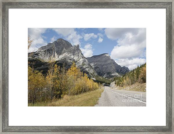 Fall Colours On Hwy #40 Kananaskis Framed Print