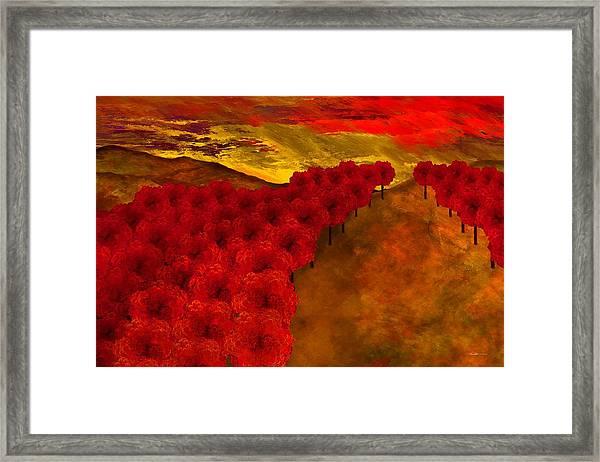 Fall Creek Framed Print